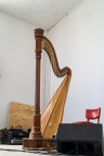 Harp brought in from Odessa
